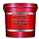 100% whey protein professional - 11 lbs - Banana - Scitec nutrition