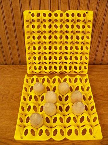 Cutler Supply, Inc Chicken Egg Incubation Tray (6 - Incubator Trays