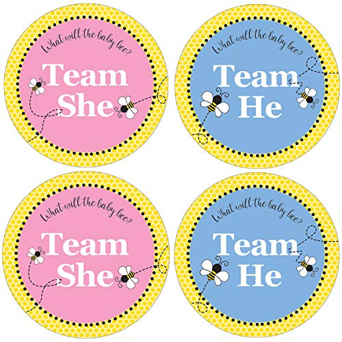 What Will Baby Bee Gender Reveal | Team Boy or Girl Labels | 40 Stickers -