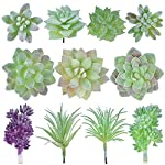 Geboor-11-Pcs-Artificial-Succulent-Plants-Unpotted-Assorted-Faux-Succulent-Fake-Succulent-Picks-for-Floral-Arrangement-Home-Decoration