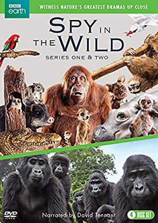 Spy in the Wild: Series 1-2