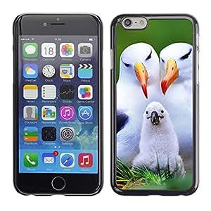 TECHCASE**Cubierta de la caja de protección la piel dura para el ** Apple iPhone 6 ** Seagull Parents Love Child White Birds