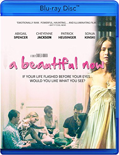 A Beautiful Now [Blu-ray]