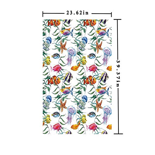 (No Glue Static Cling Window Film Decorate by Tropical Coral Reef with Seaweed Algae Jellyfish Aquatic Saltwater Nemo Theme,W15.7xL63in,for Home Office with Multi)
