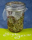 Simple Sprouts™ Disposable Sprouting Screens Home Sprouting System Refill Packs (10 pack)