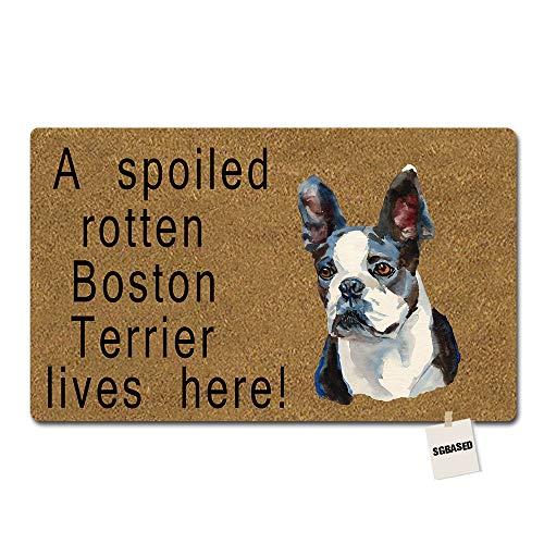 SGBASED Door Mat Funny Doormat Boston Terrier Spoiled Here Mat Washable Floor Entrance Outdoor & Indoor Rug Doormat Non-Woven Fabric (30 X 18 inches) (Mat Terrier Floor)