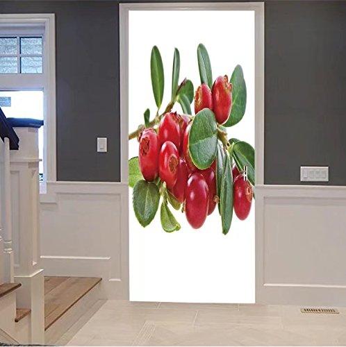 iprint 3d Door Wall Mural Wallpaper Stickers-fresh delicious cowberry cranberry bush branc For Room Decor 30x79