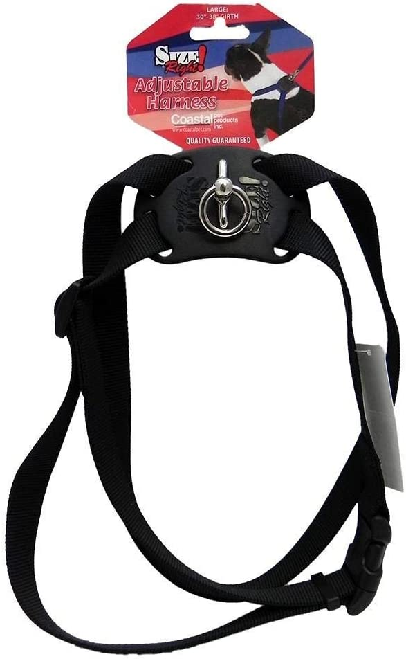 Black 30 to 38 Inches Girth /& 1 Inch Width Size Right Adjustable Dog Harness