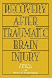 Recovery after Traumatic Brain Injury 9780805818239
