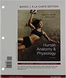 Teaching Anatomy to Students in a Physical Therapy Education Program