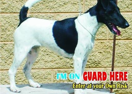 Tenterfield Terrier  STREET SIGN ~ High Quality Aluminu