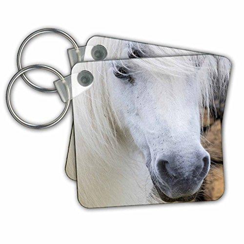Pony White Key Ring - 3