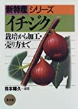 イチジク―栽培から加工・売り方まで (新特産シリーズ)