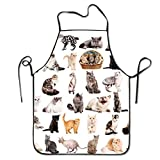 GDESFR Apron with pock,All Kinds Of Cats Deluxe Aprons Personalized Printing Kitchen Apron