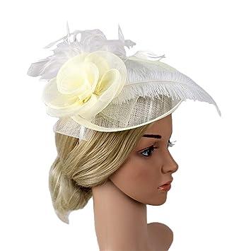 aa6bc55d4399 Amazon.com: Chenxuanamam Charming Big Flower Headband Netting Mesh ...