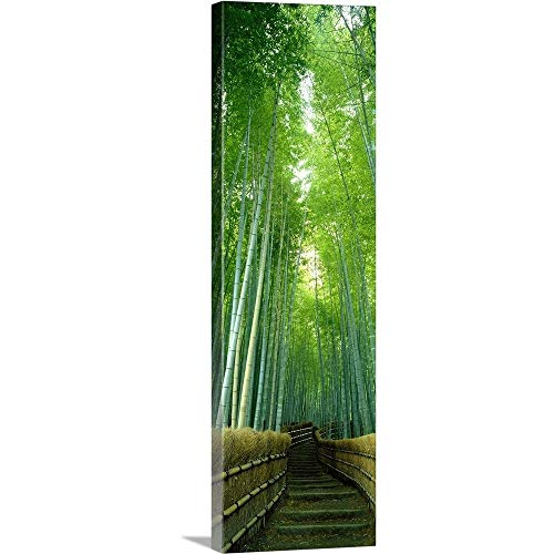 - Solid-Faced Canvas Print Wall Art Print Entitled Path Through Bamboo Forest Kyoto Japan 20