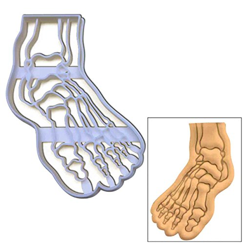 Anatomical Human Foot cookie cutter, 1 pc, Ideal for Medical themed party