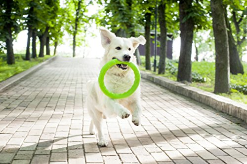 Dog Toys - Dog Training Equipment - Large Dog Toys - Toys for Dogs - Big Dog toys - Fetch Toy - Tough Dog Toys - Dog Tug Toy - Dog Ring Toy - Medium Dog toys - Dog Toy Ring by PitchDog (11, Green) by PitchDog (Image #4)