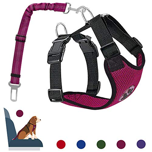 AutoWT Dog Safety Vest Harness