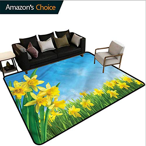Daffodils Striped Area Rug Under Table, Grass Sunny Clear Sky Pattern Printing Rugs, Fashionable High Class Living Bedroom Rugs (5'x 8')