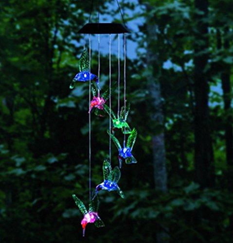 Hummingbird Outdoor Lights - 1