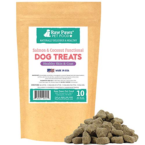 Raw Paws Omega 3 Chews for Dogs, 10-oz/100-ct - USA Made - Coconut & Salmon Dog Treats, Soft Skin Chews - Itchy, Dry Skin Dog Treats Help Support a Healthy Dog Coat - Skin and Coat Supplement for Dogs