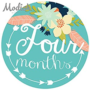 12 Monthly Baby Stickers, Tribal, Flowers, Feathers, Arrows, Girl, Baby Belly Stickers, Monthly Onesie Stickers, Baby Month Stickers, Arrows, Flowers, Tribal, Pink, Mint, Purple, Teal, Blue, Girl 5
