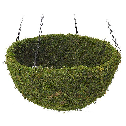(SuperMoss 7 59834 29200 5 Natural Moss Hanging Basket Round Preserved Spring Green Large, (16.5