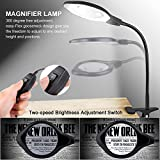 Dylviw Bright Light Desk Gooseneck Magnifier Lamp