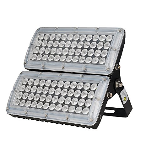 1000 Watt Flood Light Bulb - 1