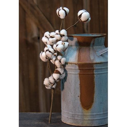 Heart of America Cotton Ball Pick - 18''