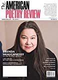 The American Poetry Review: more info