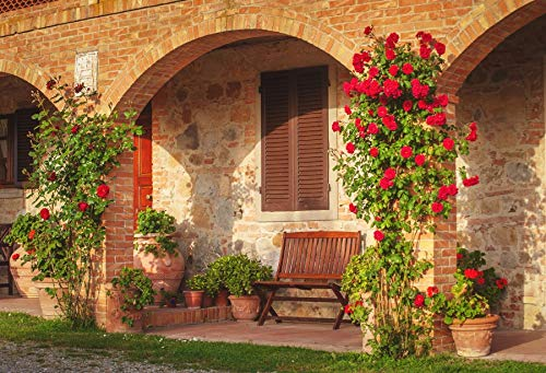 Leowefowa Backdrop 10x8ft Agritourism Vinyl Photo Background Wedding Background Country Life Red Brick Building Farmhouse Resorts Photo Booth Props Backdrops for Travel Vacation Photography