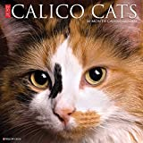 Just Calico Cats 2021 Wall Calendar