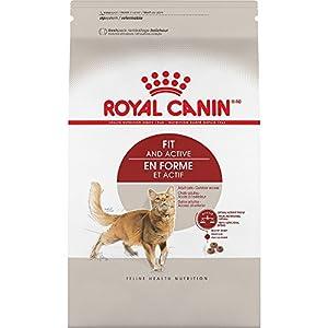 ROYAL CANIN FELINE HEALTH NUTRITIONAdult Fit 32 dry cat food