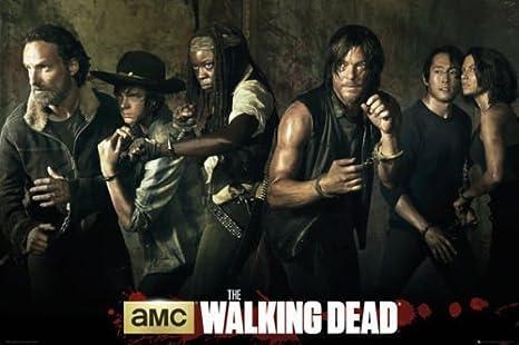 Amazon.com: makeuseof 24X36 INCH/Art Silk Poster/The Walking Dead - TV Show  Poster/Print (Season 5 CAST): Posters & Prints