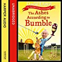 The Ashes According to Bumble Audiobook by David Lloyd Narrated by James Quinn