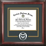 NCAA Colorado State Rams Spirit Diploma Frame, 8.5 x 11'', Mahogany
