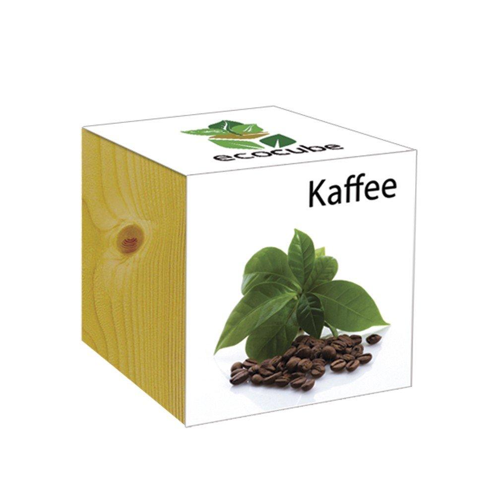 ecocube Holzwürfel - Kaffee Inventive Trading