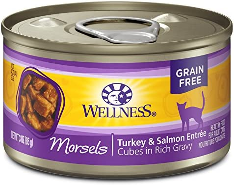 Wellness Natural Grain Free Wet Canned Cat Food Morsels Turkey Salmon