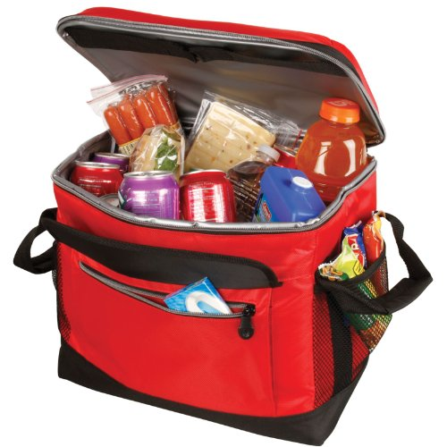 Coleman 40 Can Collapsible Cooler