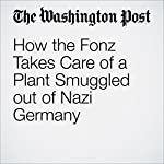 How the Fonz Takes Care of a Plant Smuggled out of Nazi Germany | Geoff Edgers