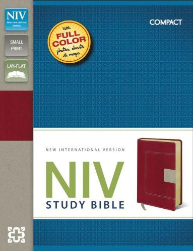 Download NIV Study Bible ebook