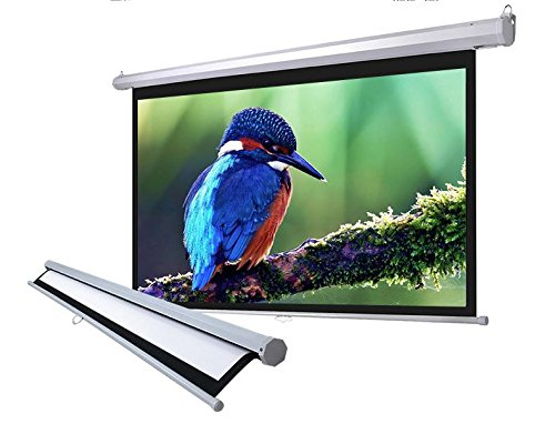 "119"" Manual Pull Down Projector Projection Screen Home Theater Movie 84""x84"" MS"