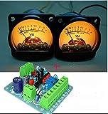 2pcs VU Panel Meter VU Audio Level Amp with Warm Back Light + One Driver Board
