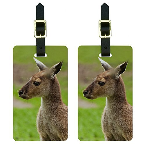 Australia Luggage Tag (Graphics & More Kangaroo-Australia Australian Luggage Tags Suitcase Carry-on Id, White)