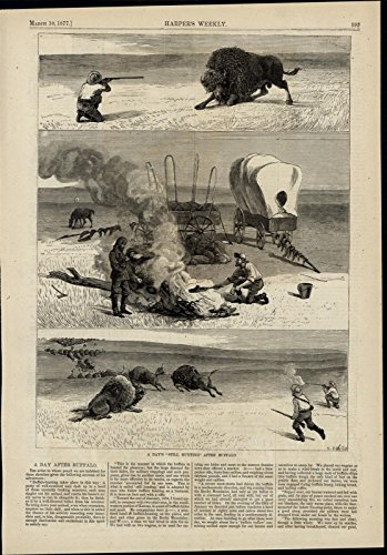 Buffalo Hunting Plains Covered Wagon Rifles 1877 great old print for display