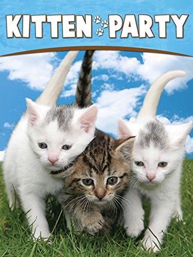 Kitten Party ()