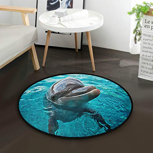 alaza Ocean Sea Dolphin Swimming Round Area Rug for Living Room Bedroom 3' Diameter(92 cm)