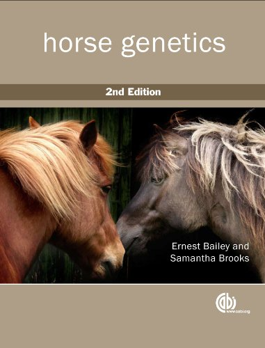 Horse Genetics by imusti